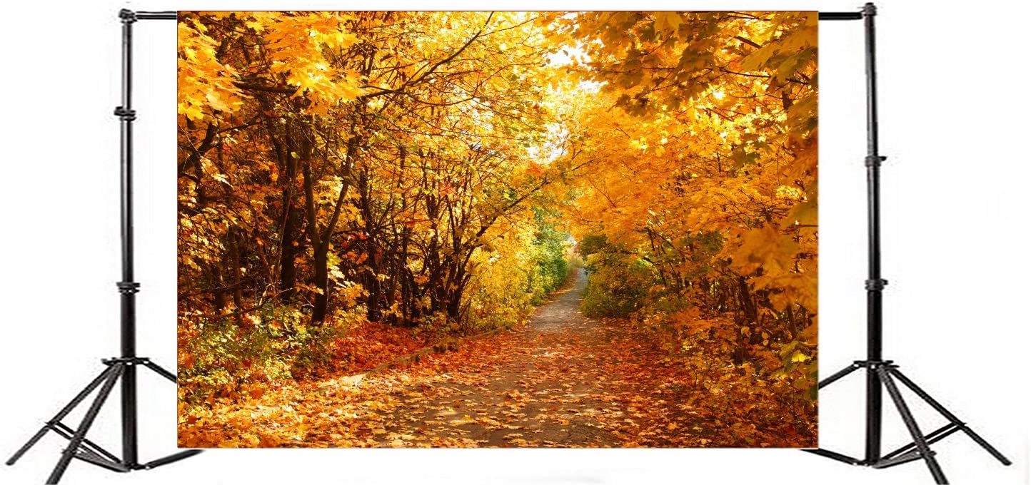 Yeele Scenic Autumn Landscape Backdrop 7x5ft Road in Autumn Forest Photography Background Fall Event Wedding Setup Outdoor Nature Scenery Hiking Travel Countryside Maple Photo Shoot Studio Wallpaper