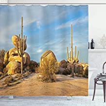 Ambesonne Saguaro Cactus Decor Collection, Saguaros and Boulders Catching Day's Last Light Desert Landscape Picture, Polyester Fabric Bathroom Shower Curtain, 84 Inches Extra Long, Ivory Blue Olive