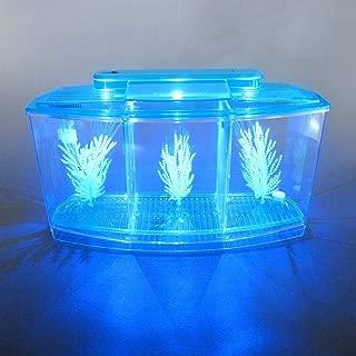 Alfie Pet - Baird Betta Aquarium Kit with 2 Dividers