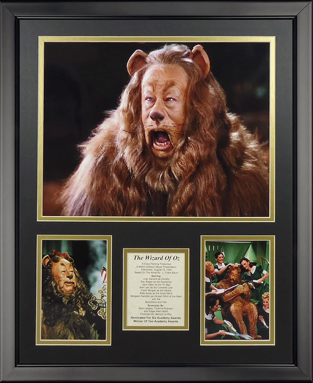 Legends Never Die The Wizard of Oz Lion Framed Photo Collage, 16  x 20