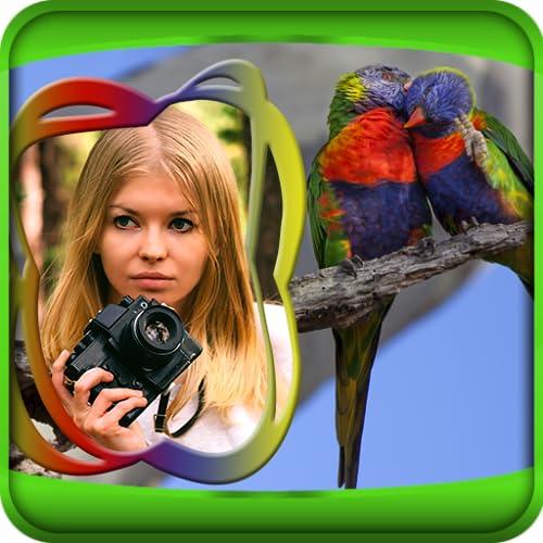 Vögel Bilderrahmen