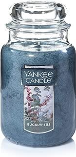 Yankee Candle Large Jar Candle, Eucalyptus