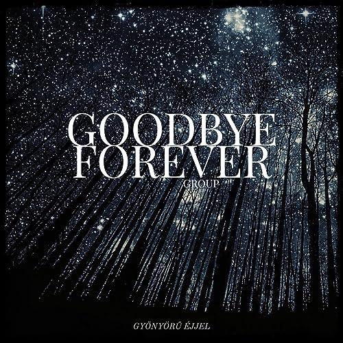 Goodbye Is Forever Lyrics