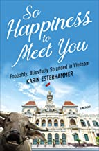 So Happiness to Meet You: Foolishly, Blissfully Stranded in Vietnam