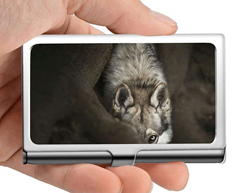 Professional Business Card Holder Stainless Steel,White Wolf Predator Animal defocused Wolf Credit Card ID Case/Holder/Cards Case