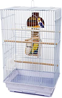 Penn Plax Bird Cage Starter Kit, Cage With Toys, Treats, Games, Ladder, and Wood Perch for Medium Sized Birds