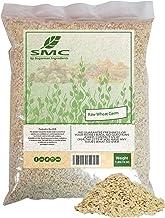 KOSHER NatureJam RAW UnCooked Wheat Germ 1 Pound Bulk Bag-16 OZ-Heat Sealed for Freshness