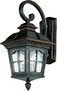 Trans Globe Lighting 5420 AR Outdoor Briarwood 25.5