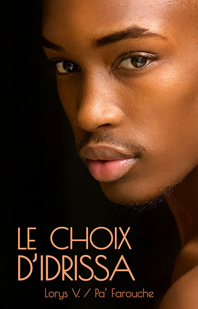 縮約中断山Le choix d'Idrissa (French Edition)