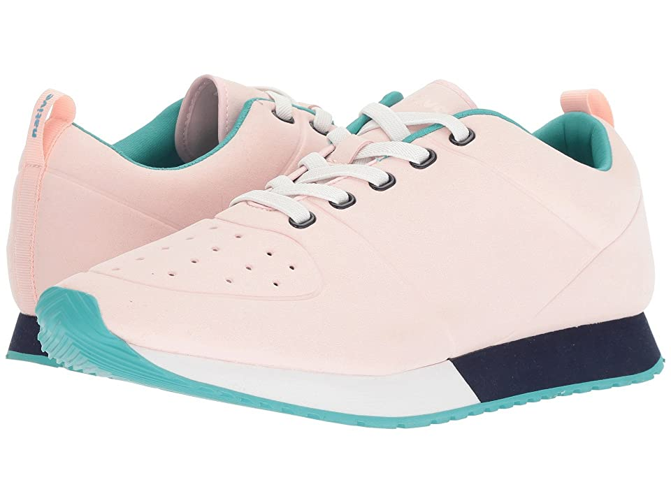 Native Shoes Cornell (Cold Pink/Shell White/Regatta Blue/Glacier Rubber) Shoes