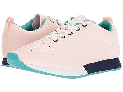 Native Shoes Cornell (Cold Pink/Shell White/Regatta Blue/Glacier Rubber) Shoes