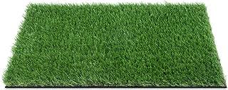 GOLDEN MOON Artificial Grass Doormat Grass 17