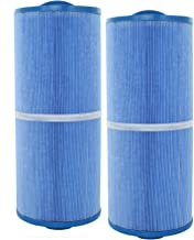 2 Guardian Pool Spa Filter Cartridges Replace FC-0196M 5CH-502 PPM50SC-F2M-M, Antimicrobial