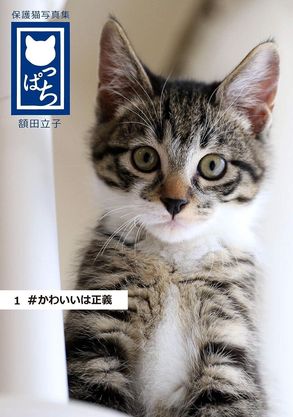 手書き比率スラッシュ保護猫写真集 ねこっぱち! (1) #かわいいは正義
