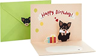 Best chihuahua birthday card Reviews
