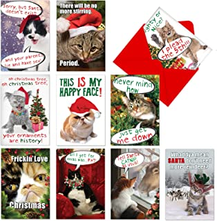 NobleWorks, PETiGreet Cat-mass - 10 Assorted Merry Christmas Cards with Envelopes - Funny Box of Cat Cards for Xmas, Holidays A1254