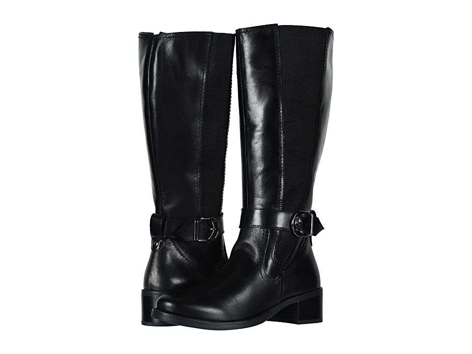 David Tate Amalfi 16 (Black Calf Skin) Women