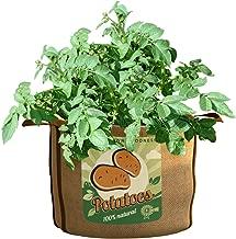 Best panacea grow bags Reviews