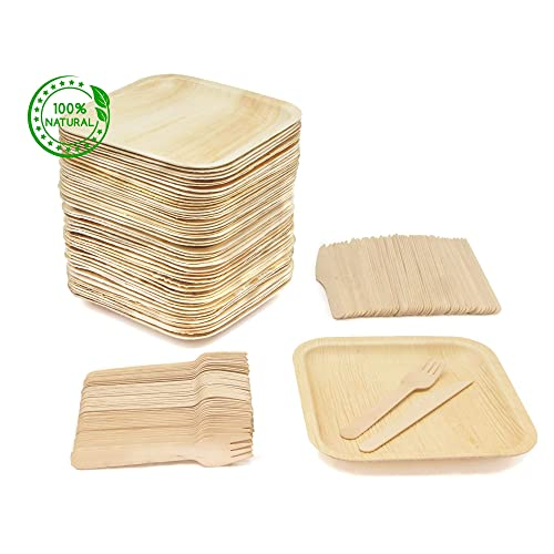 Disposable Wooden Plates Amazoncom