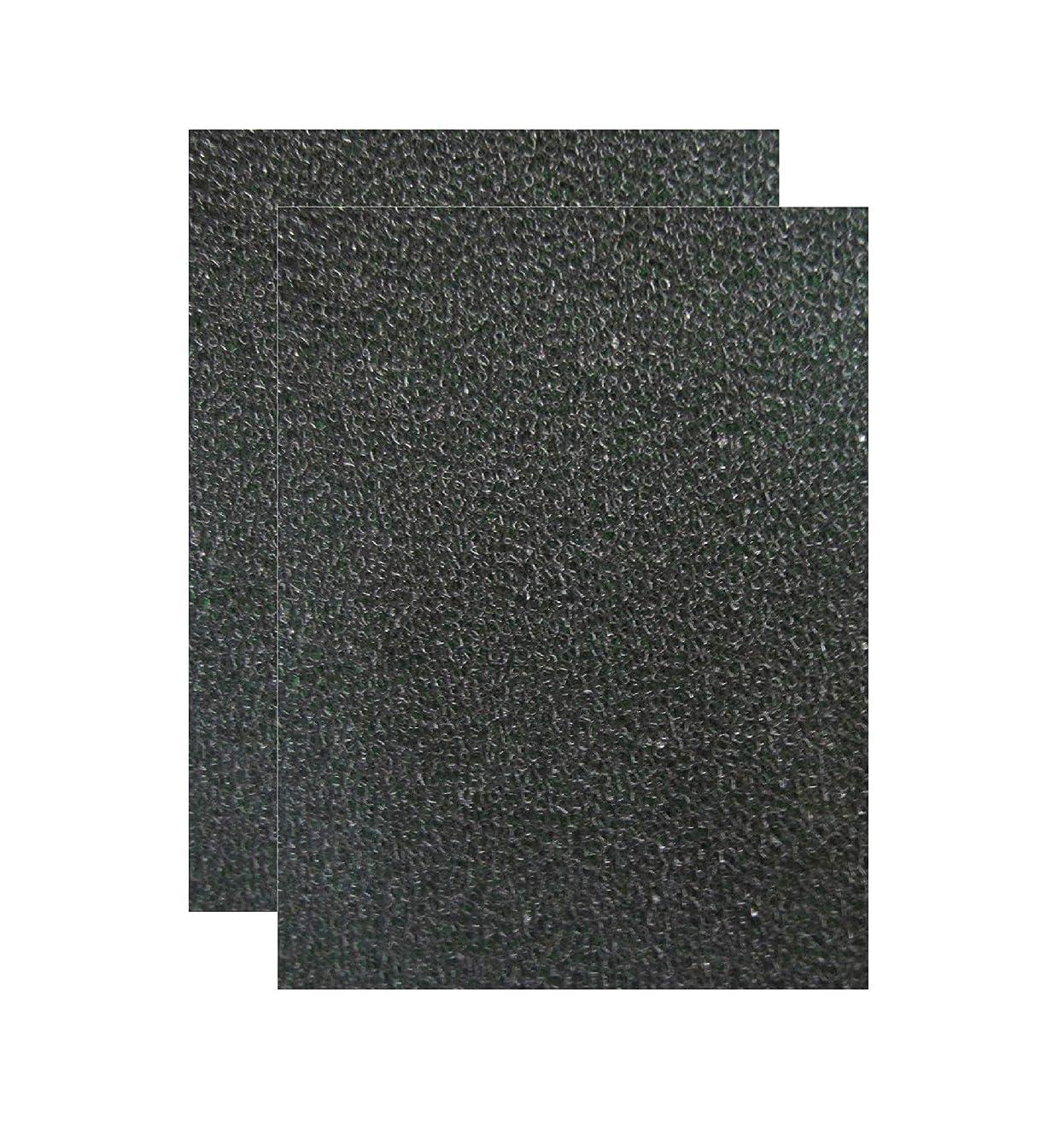 Mobile Home Furnace Foam Door Filter - 16
