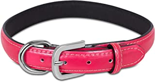 Internet's Best Patent Leather Dog Collar/Leash