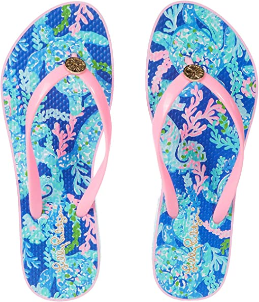 Corsica Blue Turtle Villa Shoe