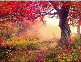 comprar comparacion Papel Pintado Fotográfico Bosque de otoño Tipo Fleece no-trenzado Salón Dormitorio Despacho Pasillo Decoración murales dec...