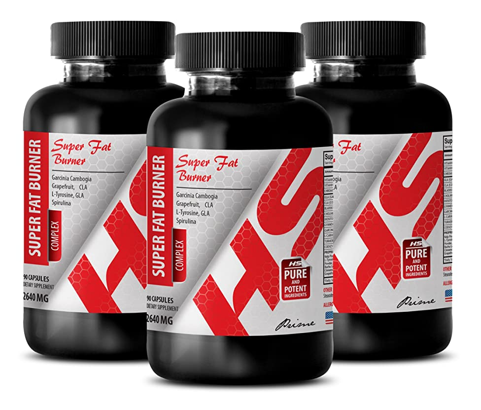 Weight loss appetite suppressant - SUPER FAT BURNER 2640mg - NATURAL COMPLEX - Inositol with choline - 3 Bottle (270 Capsules)
