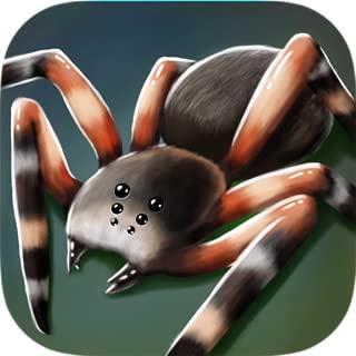 My Pet Spider 3D - Cute Buddy