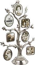إطار صور معدني على طراز شجرة العائلة من تصميمات مالدن إنترناشيونال ديزاينز، 14 خيار، 7-2 إطارات جانبية، 14-1×1، فضي