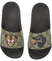 Gucci Kids - Pursuit Slide (Little Kid)