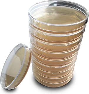 Tryptic Soy Agar (TSA) Plates by Evviva Sciences - Sterile Prepoured TSA Petri Dishes - Excellent Growth of Bacteria, Molds, Yeasts, and Other Fungi - Top Science Kit for Science Fair Projects