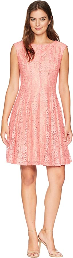 Lace Seam Down Fit-and-Flare Dress
