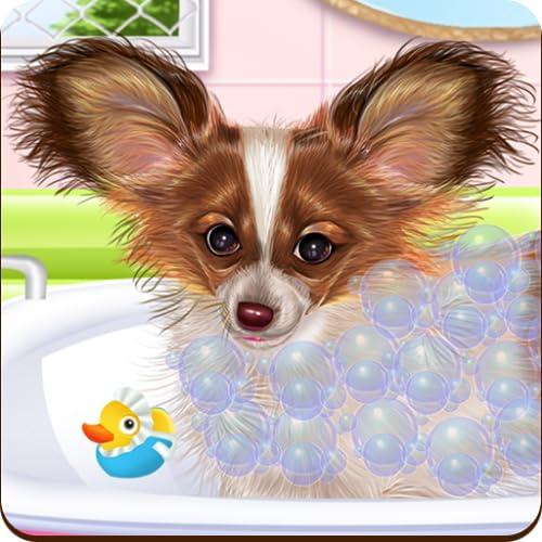 Papillon Puppy Care