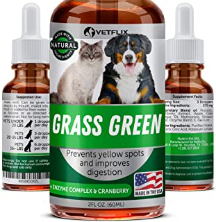 Grass Green for Dogs - USA Made - Dog Pee Lawn Repair - MAX BioAvailability - Removes Yellow Grass Spots Caused by Dog Urine - DL-Methionine & Probiotics for Digestive Health - Dog Rocks Alternative