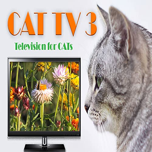 Cat TV 3 - Television for Cats