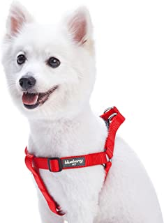 Best 5280 dog harness sizing Reviews