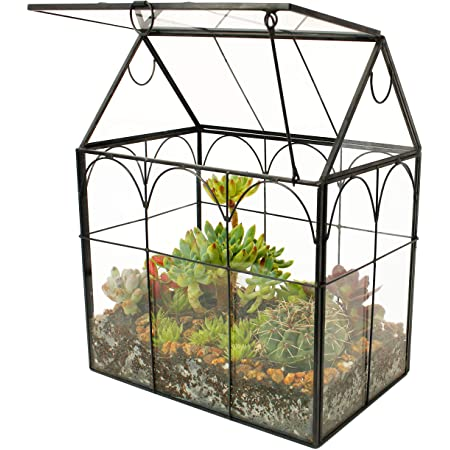 Archway Glass Terrarium Flowers Plants Stones Animals Metal and Glass