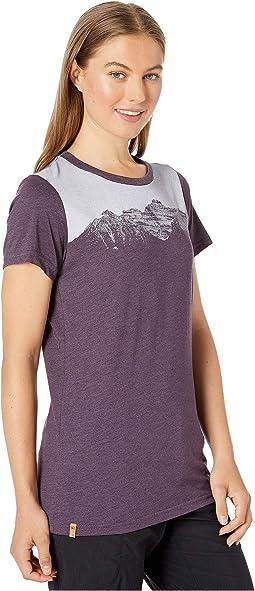 Aubergine Purple Heather