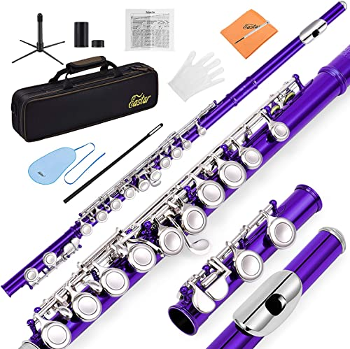 Eastar C Flutes Closed Hole C Flute Musical Instrument with Joint Grease,Cleaning Rod, Carrying Case, Stand, Gloves a...