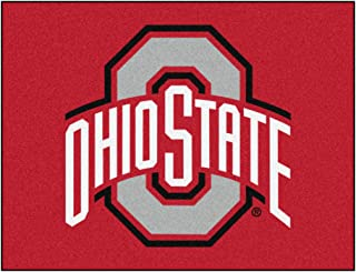 FANMATS NCAA Ohio State University Buckeyes Nylon Face All-Star Rug