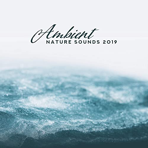 Ambient Nature Sounds 2019: 15 Relaxing Melodies for Sleep ...