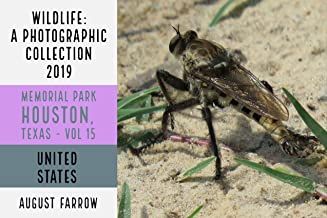 Wildlife: 19 Days in Memorial Park - 2019: A Photographic Collection, Vol. 15 (Wildlife: Memorial Park: Houston Texas)