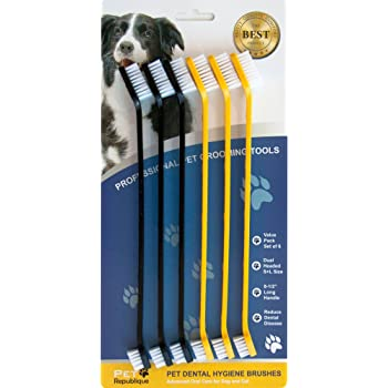 Pet Republique Dog Toothbrush Series Cat and Dog Finger Toothbrush, Handle Toothbrushes, Toothpaste for Dogs, Cats, and Most Pets