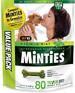 VetIQ Minties Dog Dental Bone Treats, Dental Chews for Dogs, (Perfect for Tiny / Small Dogs under 40 lbs)
