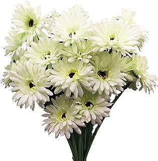 cn-Knight Artificial Flower 12pcs 22'' Long Stem Silk Daisy Faux Mums Flower Chrysanth Gerbera for Wedding Bridal Bouquet Bridesmaid Home Decor Office Baby Shower Prom Centerpiece(Elegant White)