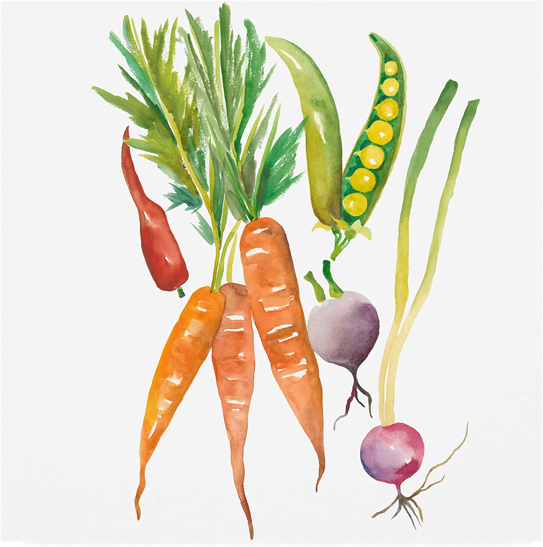 Trademark Fine Art Harvest Medley IV by Chariklia Zarris, 14x14