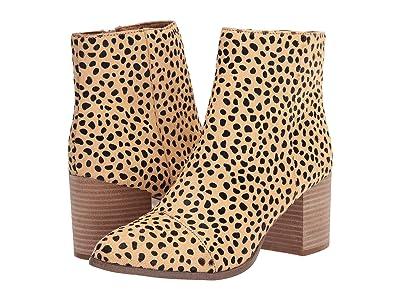 DV Dolce Vita Tierney (Cheetah) Women