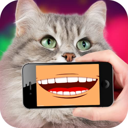 Talking Cat Translator PRO