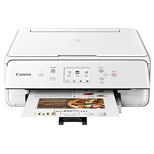 Canon 2986C022 PIXMA TS6220 Wireless All in One Printer with Mobile Printing, White, Amazon Dash Replenishment Ready, One Size, White